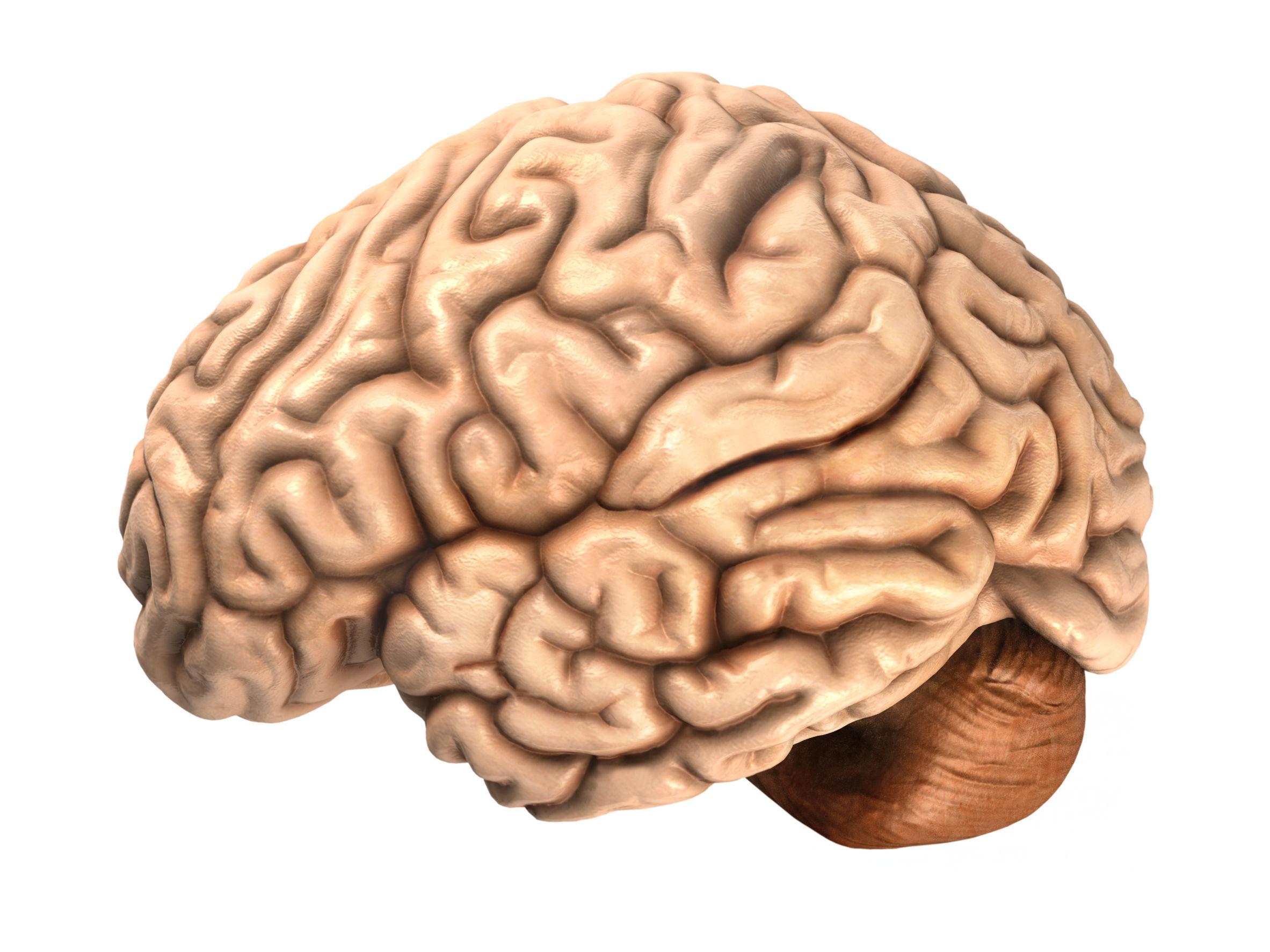 How do you teach mental toughness image 3